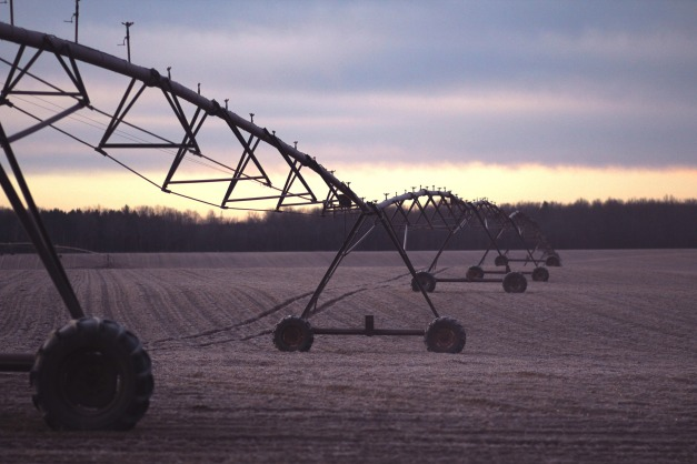 irrigation-1210072_1920